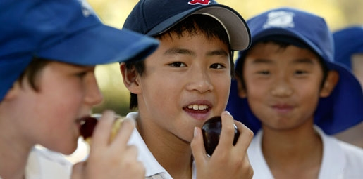 boy eating a plum