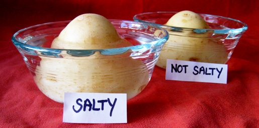 2 potatoes in bowls of water - one with salty label and one with not salty label