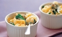 Individual Macaroni, Broccolini and Cauliflower Cheese